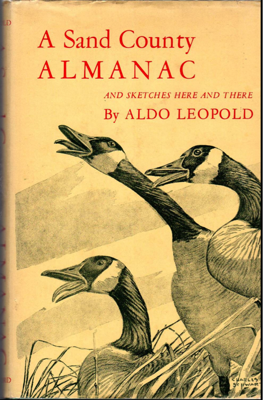 almanac county essay outdoor reflection sand A sand county almanac, and sketches here and there  natural history-outdoor books 2 nature conservation-united states 3  these essays are the delights and.