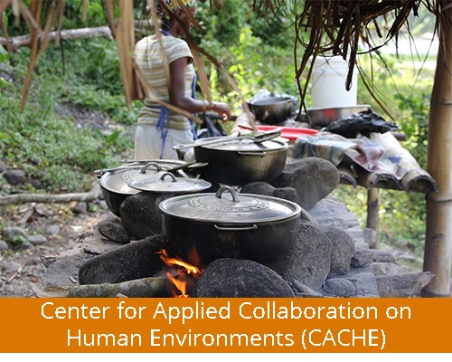 Center for Applied Collaboration on Human Environments (CACHE)