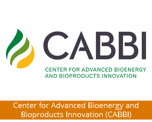 Center for Advanced Bioenergy and Bioproducts Innovation (CABBI)