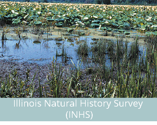 Illinois Natural History Survey (INHS)
