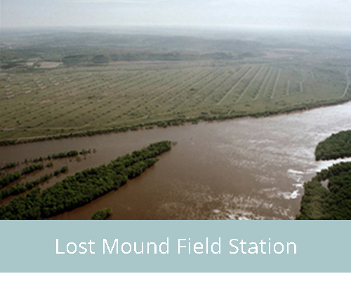Lost Mound Field Station