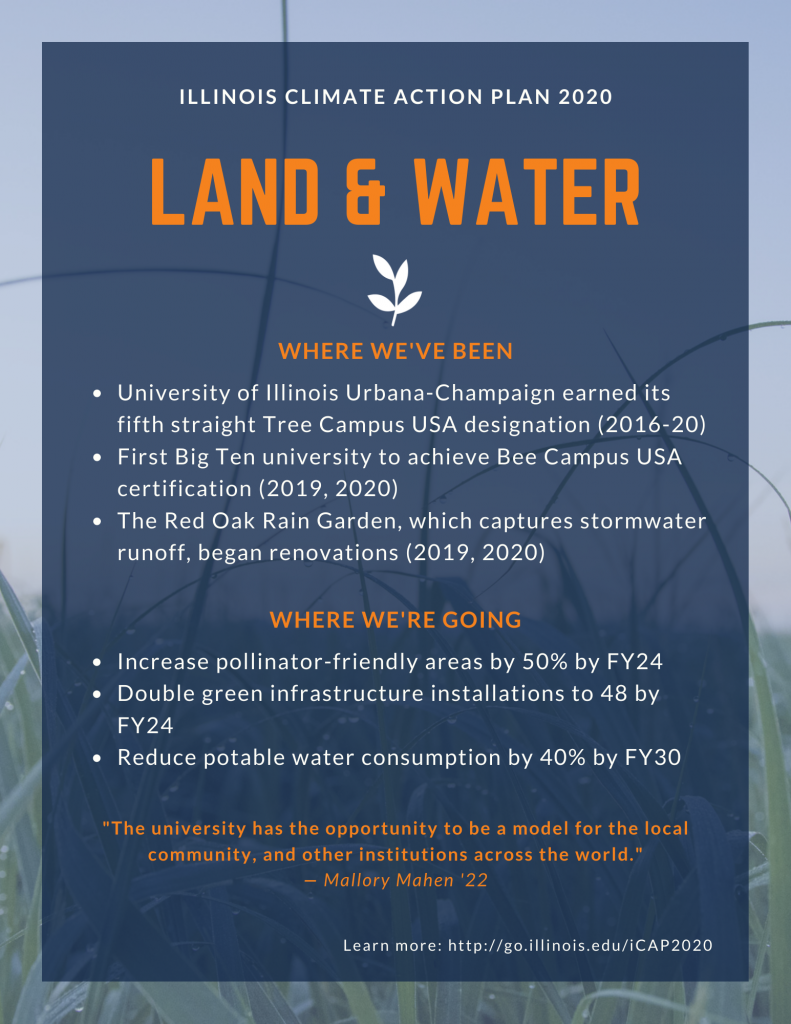 Poster displaying key points from the iCAP 2020 Land and water theme.